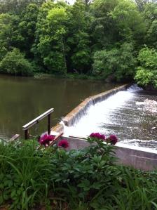 A view of Neshaminy Creek